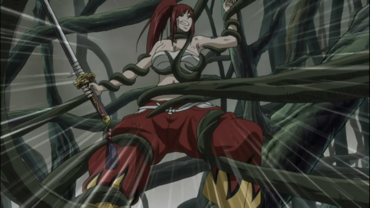 Fairy Tail 114 Anime Evo